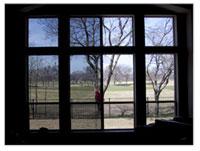 windowtint1